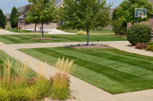 Residential Mowing Normal IL